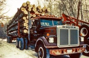 Разновидности грузовых автомобилей